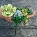 bymami bymamidk hækleblog blog hækle hæklet crochet crocheted diy opskrift pattern gratis free freebies hæklede kreativ krea hånd håndarbejde håndlavet handmade sukkulenter succulents planter kaktus plants catus cacti værtindegave